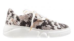 AGL D938001 multi snake printchunkySneaker.